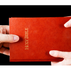 Jour 26 | GO pour offrir une Bible